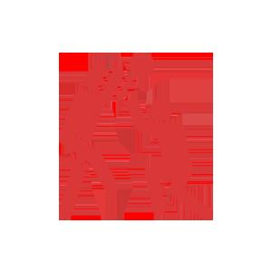 BJK - Kabataş Vakfı Okulları Spor Faaliyetleri